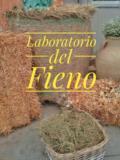 laboratorio del fieno