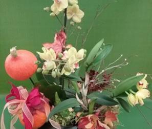 Composizione autunnale con Orchidee e zucche