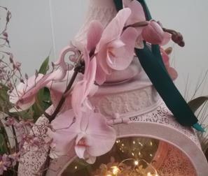 Composizione con Phalaenopis rosa