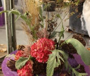 Composizione fiori e carciofi
