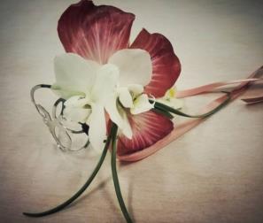 corsage rosa di Gorizia e orchidea