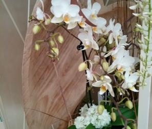 Cuore in legno e fiori bianchi