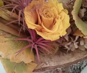 fiori e foglie d'autunno
