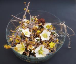 fiori invernali profumati