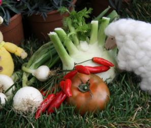 i prodotti del nostro orto