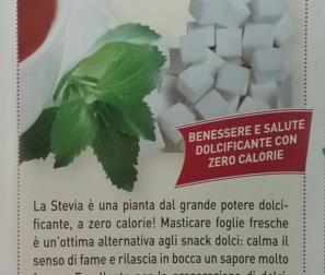 scheda  stevia