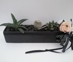 vaso in ceramica con fiori e cactus