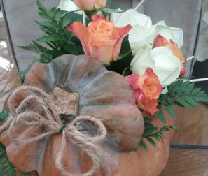 Zucca con fiori arancio