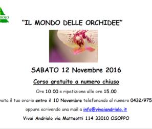 il mondo delle orchide evento fb